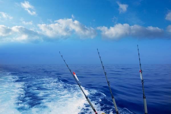Sandestin Fishing Charters